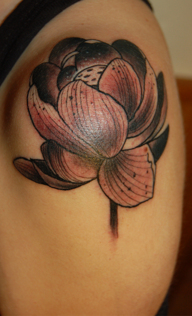 Flor Loto Wikipedia Tatoo